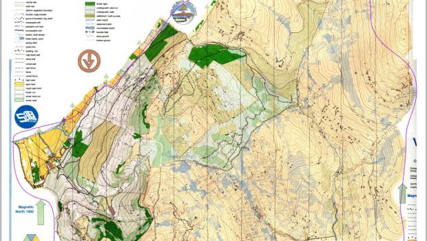 Rostrevor map